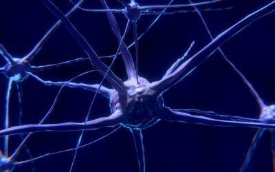 Por qué es efectiva la terapia neural